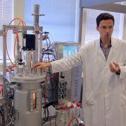 Le plastique végétal passe du labo à l'usine