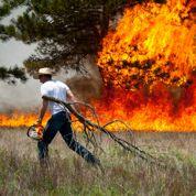 Le Colorado ravagé par un grand feu de forêt