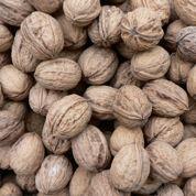 Cancer de la prostate : pensez huiles végétales