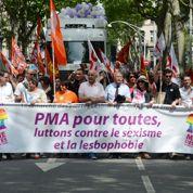 La PMA au cœur de la gay pride