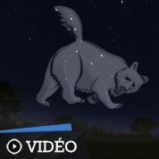Observez la Petite Ourse et l'étoile polaire
