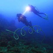 Conseils pour filmer sous l'eau