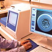 La recherche sur l'embryon en débat