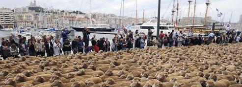 Marseille 2013 a déjà dilapidé son capital
