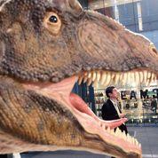 Le tyrannosaure était bien un chasseur