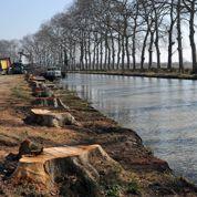 Le canal du Midi abesoin de dons