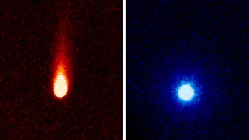 La comète ISON sème du dioxyde de carbone sur son passage PHO92f3aa78-f473-11e2-8583-97f10ddf409f-805x453