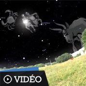 Les constellations du zodiaque visibles en été