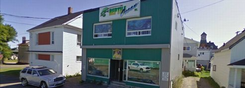Canada : un serpent tue deux enfants dans leur sommeil