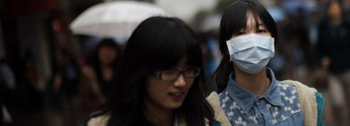 La grippe aviaire H7N9 se serait transmise d'homme à homme
