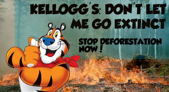 Campagne lancé par SumOfUs pour arrêter la déforestation. <i>Capture d'écran du site de SumOfUs.</i>