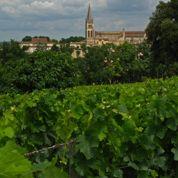 Risques de blanchiment dans les vins français