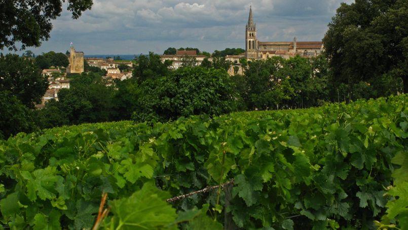 À Saint-Émilion (Gironde), de nombreux domaines viticoles ont été rachetés par des investisseurs chinois ou russes.