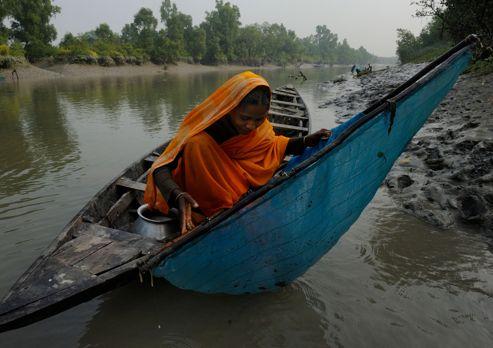 Bangladesh : les gardiens de la mangrove