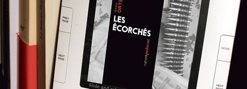Rentrée littéraire : pourquoi l'ebook s'embourbe en France