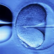 Deux enfants nés d'un don d'ovocytes vitrifiés