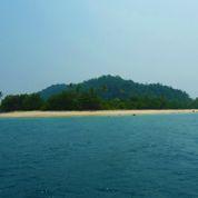Un patron s'exile sur une île déserte