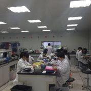 Bureau Veritas traque sans relâche les défauts des produits chinois