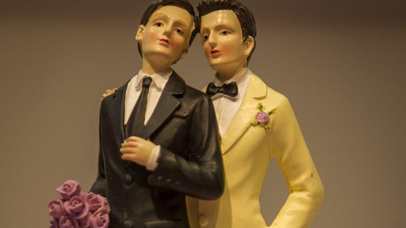 Mariage gay: l'UMP pour la liberté de conscience des élus