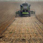 PAC: Hollande attendu par les agriculteurs
