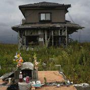Fukushima, terre fantôme