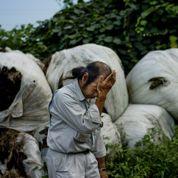 La situation précaire des victimes de Fukushima