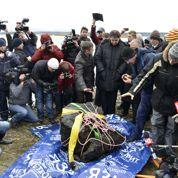 La météorite russe sort de son lac