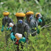 Colombie: Tumaco sous l'emprise de la drogue