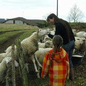 L'agriculture française se féminise