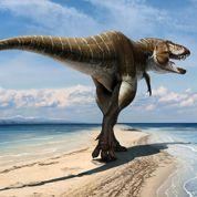 Le T. Rex a un grand-oncle baptisé le «roi du sang»