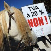 Hausse de TVA: un fonds pour aider les centres équestres