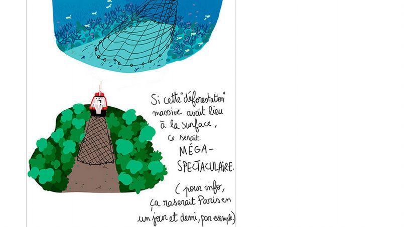http://www.lefigaro.fr/medias/2013/11/20/PHO5abf1416-522f-11e3-9aa7-6c8f409a8ec5-805x453.jpg