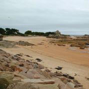 Le corps d'un enfant retrouvé sur une plage