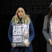 Les anti-foie gras repartent en guerre