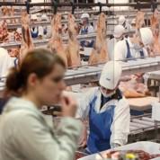 Dumping social: le scandale des abattoirs allemands