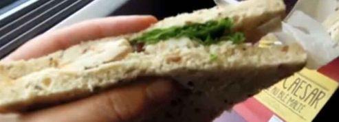SNCF: que valent les nouveaux sandwiches ?