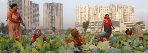 OMC: l'Inde prête au veto sur l'agriculture