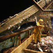 Casino ne vendra plus de poissons pêchés en eaux profondes
