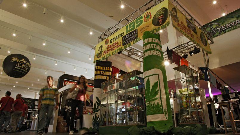 La foire du cannabis de Pampelune, en avril 2008.