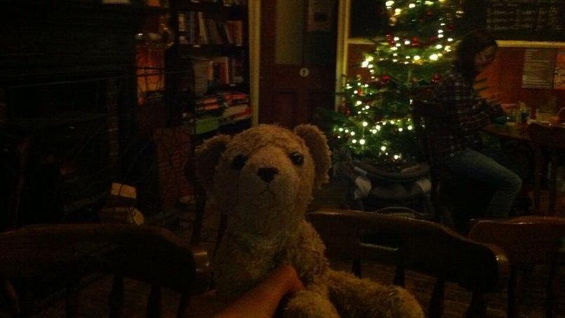 Roar sotto l'albero di Natale