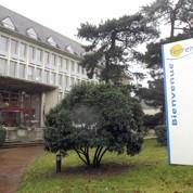 La coopération agricole française monte en puissance