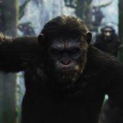 La Planète des singes 2 :l'humanité à sa perte