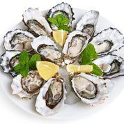 La recherche de nouvelles huîtres résistantes aux épidémies