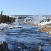 Yellowstone : Magie blanche en hiver
