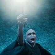 De Voldemort à Babar: les insultes politiques branchées