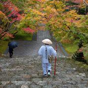 Shikoku, le Compostelle japonais