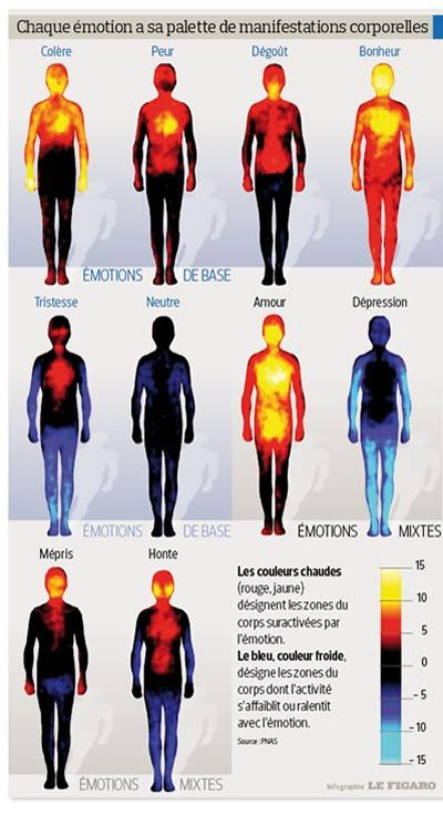 émotions qui se traduisent en sensations physiques PHO90c5e2b2-76f9-11e3-ae83-c18dfe4d7cca-400x735