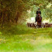 très à cheval sur les traditions