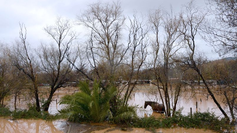 inondation var et les chevaux? PHO1be3cd94-81a6-11e3-acd3-7cac2231ad06-805x453