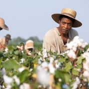 12 Years a Slave :les chaînes qu'on abat